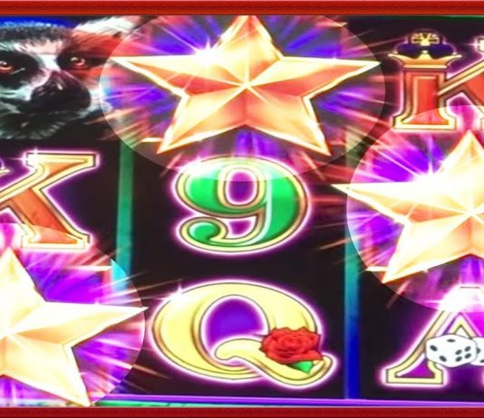 Extra vegas casino no deposit bonus 2019
